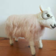 Cheviot Sheep, farm animals, wool needle felted, character, OOAK, felted, softs,
