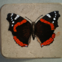Marble, Red Admiral paper weight.