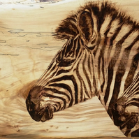 Rain Clouds - Study of Zebras