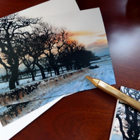 Winter Morning - Pack of five Christmas cards
