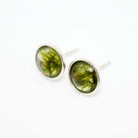 Real moss sterling silver 8mm stud earrings - gift boxed