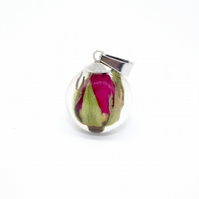 Real red rose bud pendant necklace - with silver chain and gift box
