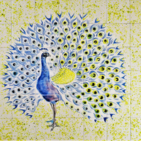 "Backsplash tiles, Hand painted mural, 28"" W x 24"" H, "" The Proud Peacock """