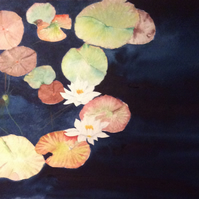 Water lilies Original Watercolour Painting