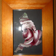 England with Rose Photo Frame