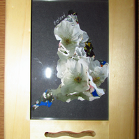 England with Blossom Photo Frame