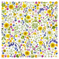 British Wild Flowers Print – Gift for Nature Lovers