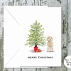 Golden Cockapoo Folded Christmas Cards - pack of 10 - personalised