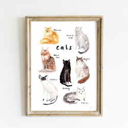 Cats Giclee Art Print - Cat Breeds Wall Art, Popular Cats Print, Cat Home Decor