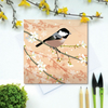 Coal Tit on Plum Blossom Spring Greetings Card - British Bird, Eco Friendly