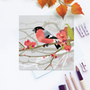 Bullfinch on Japanese Quince Greetings Card - British Bird, Eco Friendly, Blank