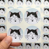 Black and White Cat Stickers (Our Dave - Blue) Set of 4
