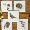 Beautiful Nature multi pack of greeting cards