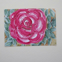 Aceo- rose