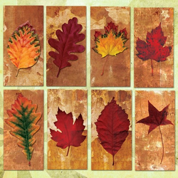 AUTUMN LEAVES ON GRUNGE BACKGROUNDS 2x1in Domino Tile Digital Collage Sheet - 0017