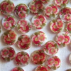 20 x shell buttons (leila) - 11mm