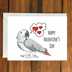 Happy Valentine's Day Parrot greeting card A6