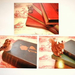 "Set of 3 ""Book Lovers"" Postcards"