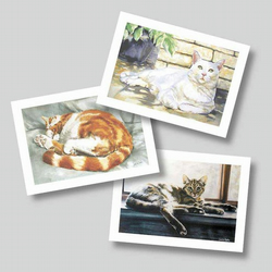 Cats - Set of 3 Blank Greetings Cards from My Original Watercolours