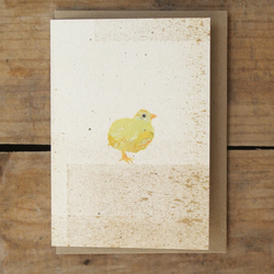 Spring offer! Chick Card