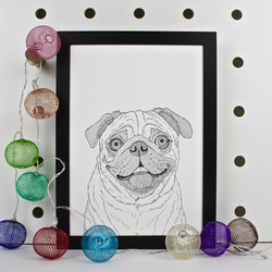 Pug Dog Portrait Print