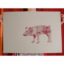 Piglet Screenprint, life-size piglet (from a limited edition of 15) pig