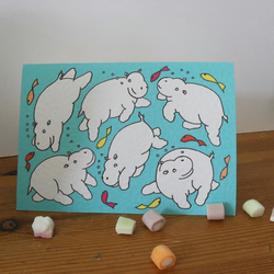 Blank greetings card - Swimming Hippos