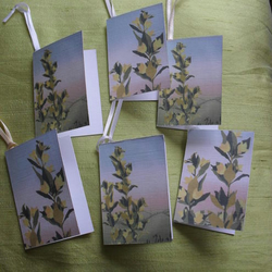 Yellow Loosestrife – six gift tags in fresh spring colours