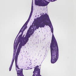 Purple Penguin Limited Edition Collagraph Print