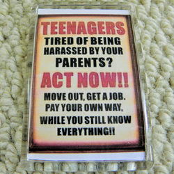 Teenagers! Fridge Magnet