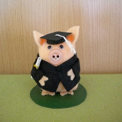 George the Graduation Pig