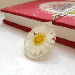 Real Daisy Oval Silver Necklace