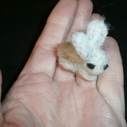 Miniature Marble Grey Bunny Rabbit