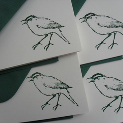 Forest Green Bird Note Cards