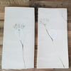 Pair of Natural Cow Parsley Ceramic Wall Art Tiles