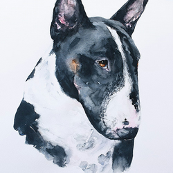 "Custom pet portrait in watercolour A2 16.5"" x 23.5"""