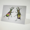 Rainbow Stag Beetles Card