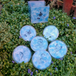 ***SALE*** Set of 6 Coasters in Presentation Box - Blue