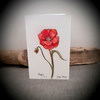 Hand drawn poppy flower card