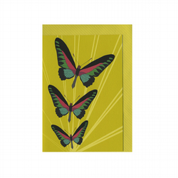Illustrated Sunburst Butterflies Printed Card