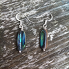 Abalone Shell Stick Earrings