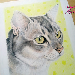 Custom pet portrait, colour pencil portrait, dog drawing, cat drawing, Pet owner