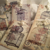 Shabby Chic Bird Cage Gift Tags x 9