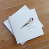 Goldfinch square card