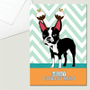 Boston Terrier Christmas Card, with Christmas Puddings