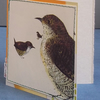 Upcycled Brian Wildsmith Birds (1969) Card, One-Of-A-Kind (35)