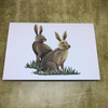 British Wildlife - set of 5 blank greeting cards