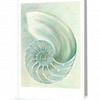 Chambered nautilus in green blank greeting card for any occaision or just a note