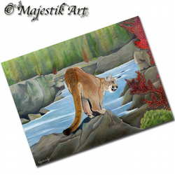 ACEO Print Mountain Lion EDEN Big Cat Animal