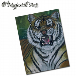 ACEO Print Tiger WHAT YOU LOOKING AT? Big Cat Wildlife